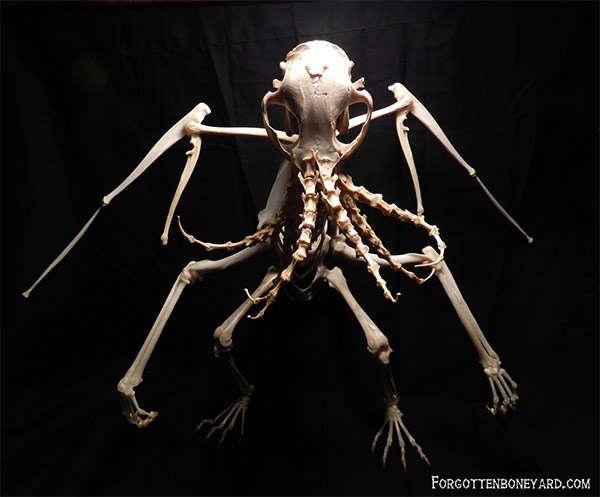 Terrifying Bone Scultpures