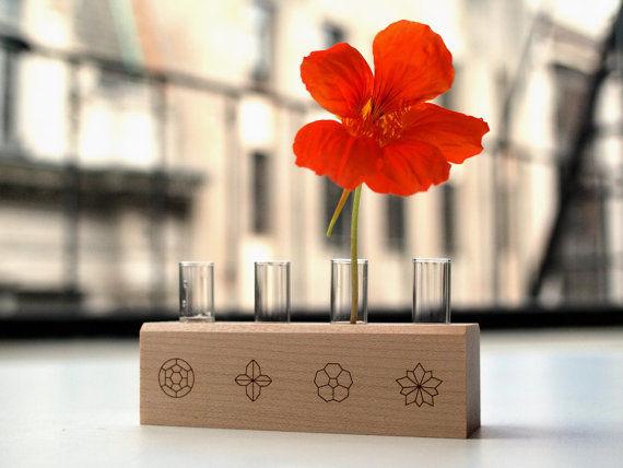 DIY Edible Flowers