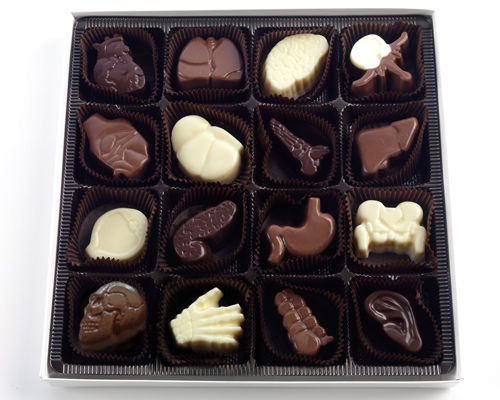Body Organ Chocolates