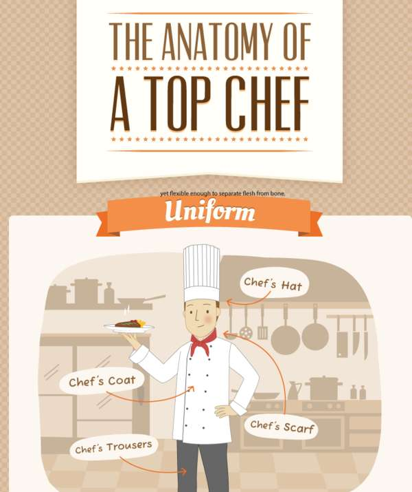 The Anatomy of a Top Chef