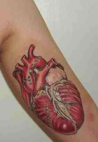 Anatomical Tattoo's