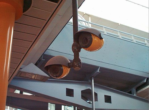 Eyeball Mimicking Security Cameras